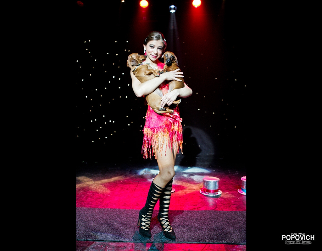 Pet Theater Photos
