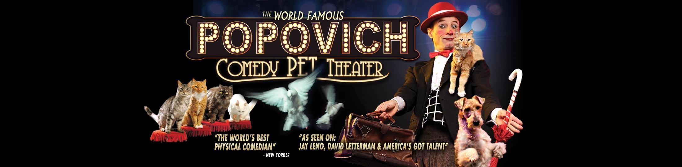 Popvich Pet show